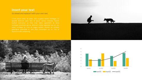 애완 동물 프레젠테이션용 PowerPoint 템플릿_24