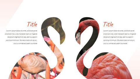 Flamingo Best PPT Templates_02