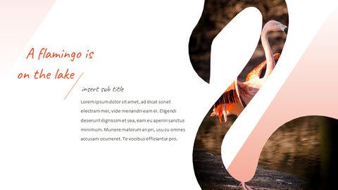 Flamingo Best PPT Templates_03