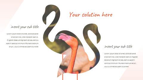 Flamingo Best PPT Templates_04