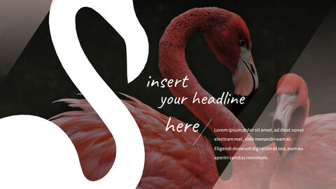 Flamingo Google Slides Presentation_04