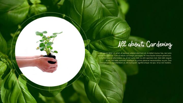 Gardening Simple PPT Templates_02