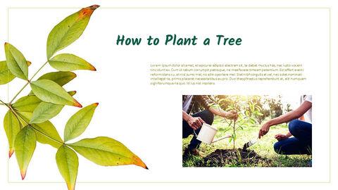 Gardening Simple PPT Templates_03