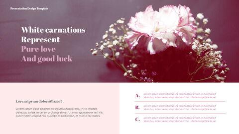 카네이션 꽃과 선물 피피티 템플릿 디자인_26