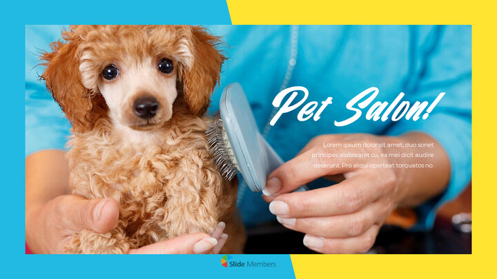 Pet Salon Easy PPT Template_01