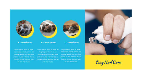 Pet Salon PowerPoint to Google Slides_04