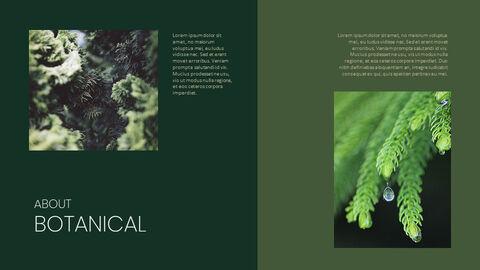 식물 배경 파워포인트_03
