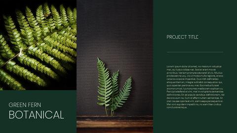식물 배경 파워포인트_05