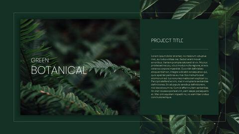 식물 배경 파워포인트_25