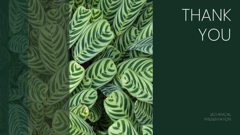 식물 배경 파워포인트_40