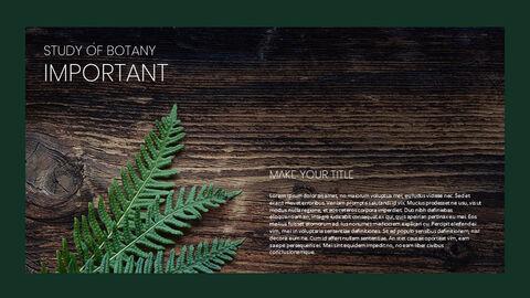 식물 Google 파워포인트 슬라이드_02