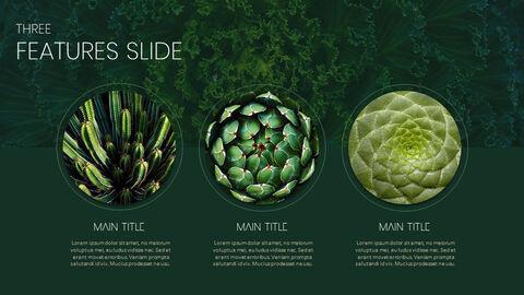 식물 Google 파워포인트 슬라이드_03