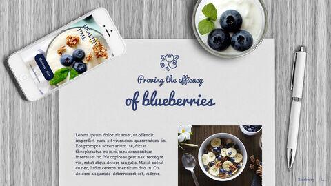 Blueberries Google PowerPoint Presentation_04