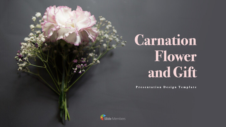 카네이션 꽃과 선물 키노트 템플릿_01