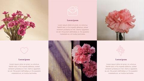 카네이션 꽃과 선물 키노트 템플릿_15
