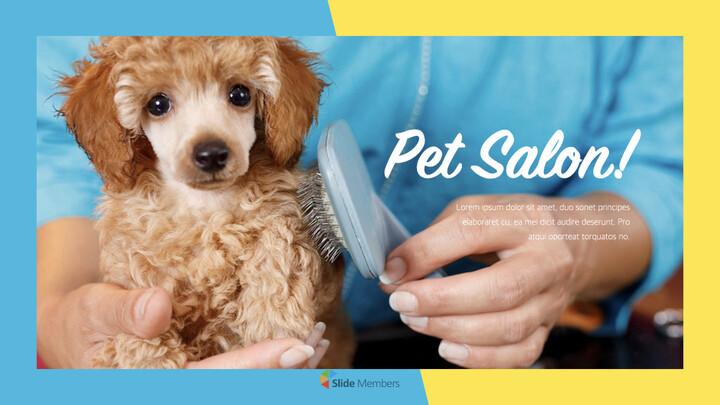 Pet Salon Keynote Windows_01