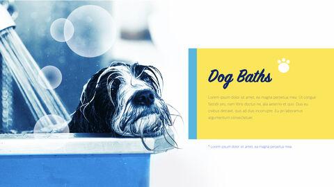 Pet Salon Keynote Windows_02