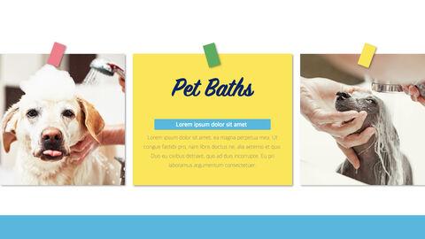 Pet Salon Keynote Windows_03