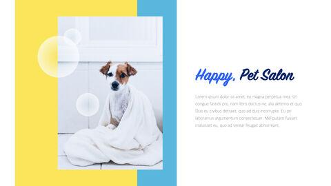 Pet Salon Keynote Windows_04