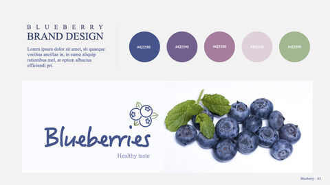 Blueberries Keynote to PPTX_03