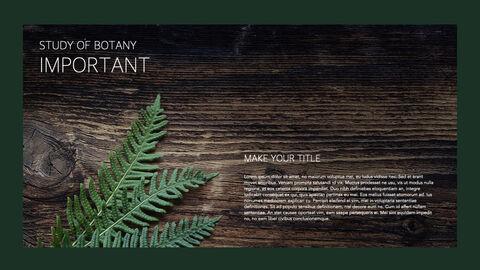 식물 멀티 키노트 템플릿_04
