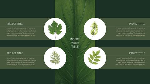 식물 멀티 키노트 템플릿_15
