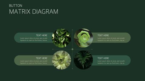 식물 멀티 키노트 템플릿_21
