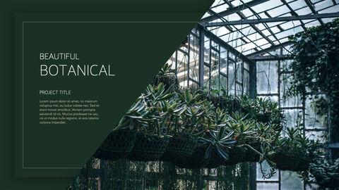 식물 멀티 키노트 템플릿_23