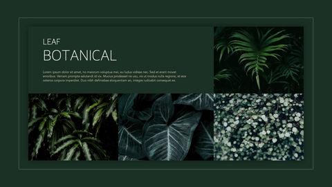 식물 멀티 키노트 템플릿_26