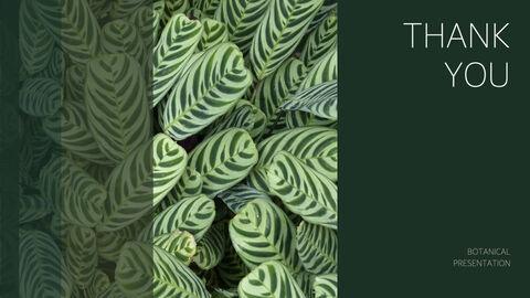 식물 멀티 키노트 템플릿_40