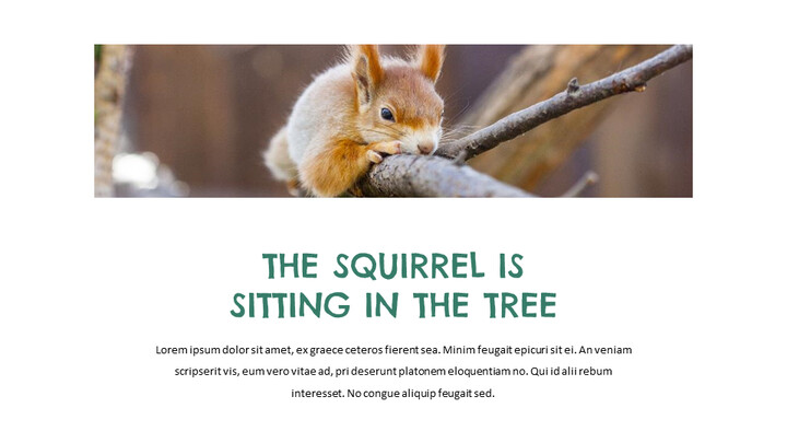Squirrel Easy Slides Design_02