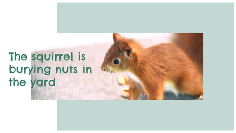 Squirrel Easy Slides Design_04