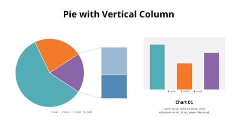Bar of Pie Combination Chart_03