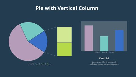 Bar of Pie Combination Chart_06