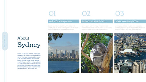 Sydney Travel, Australia Action plan PPT_04