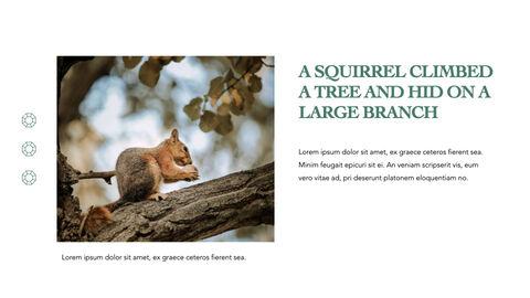 Squirrel iMac Keynote_04