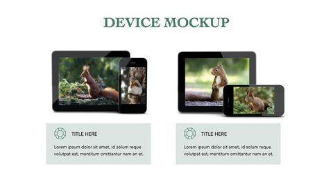 Squirrel iMac Keynote_40