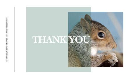 Squirrel iMac Keynote_41
