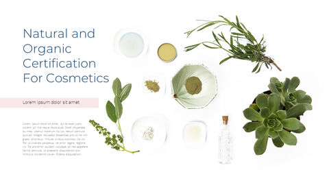 Natural Cosmetic Presentation PPT_30