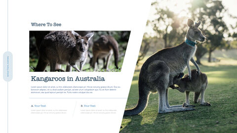 호주 시드니 여행 키노트의 PPT_06
