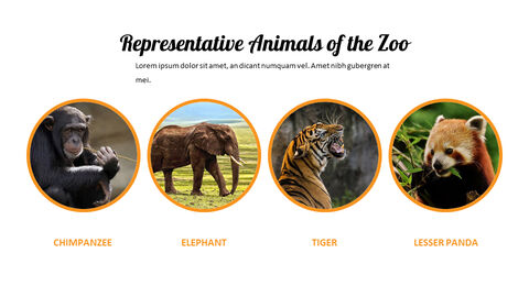 zoo Google Slides Presentation Templates_03