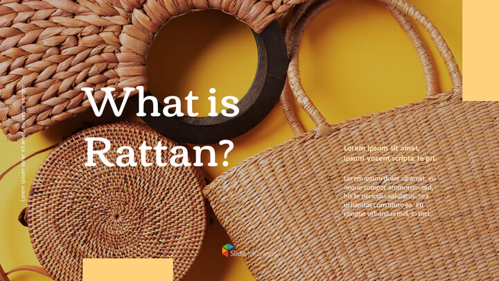 what is rattan Presentations PPT_01