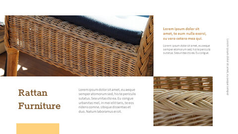 what is rattan Presentations PPT_03
