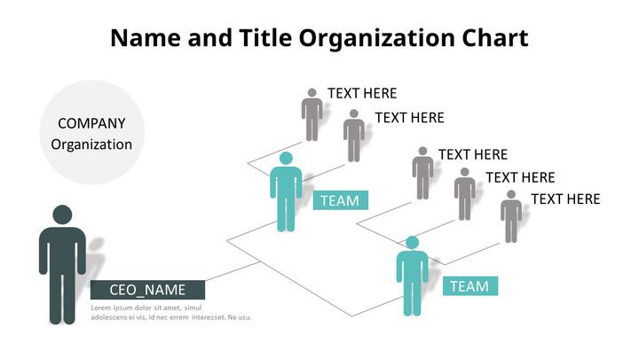 Human Infographic Organizational Chart_01