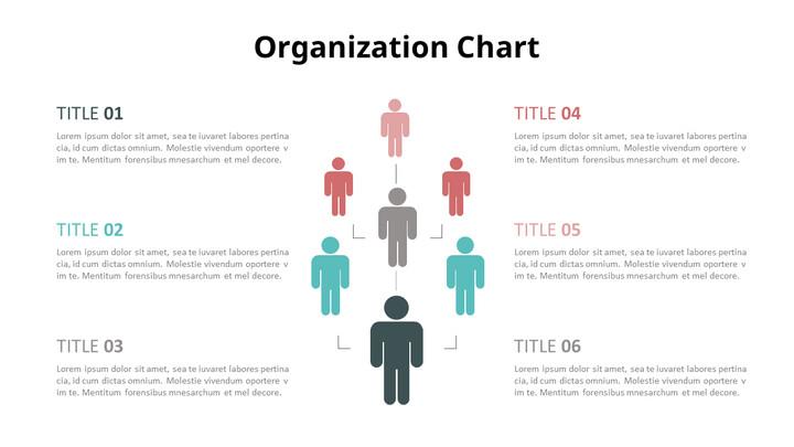 Human Infographic Organizational Chart_02