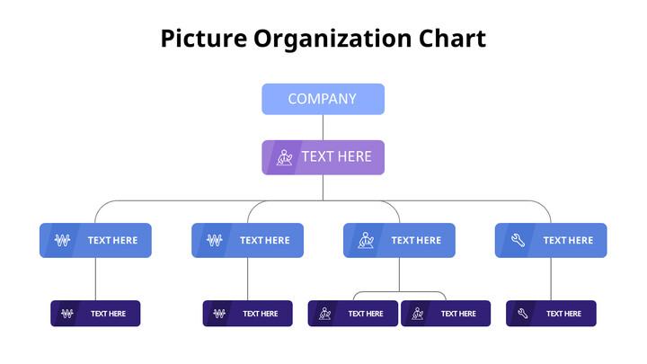 Organizational Structure_01