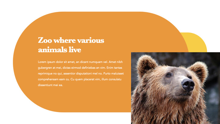 zoo Theme Keynote Design_02