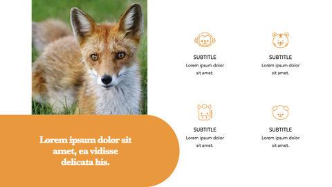 zoo Theme Keynote Design_05