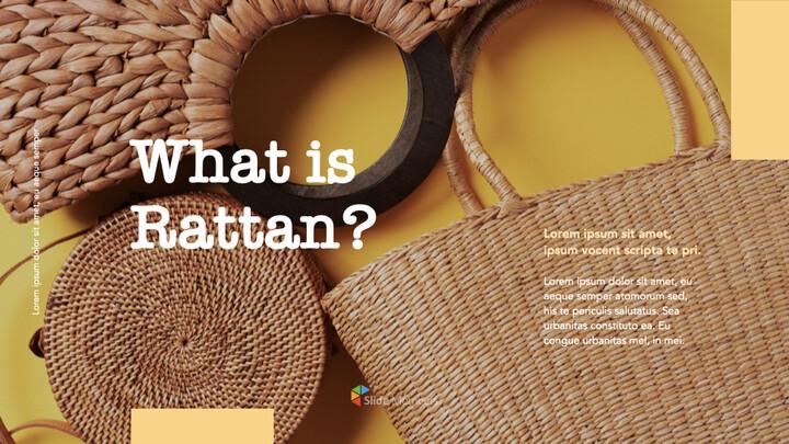 what is rattan Windows Keynote_01