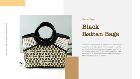 what is rattan Windows Keynote_25